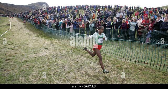 cedar park cross country meet 2012 olympics