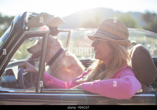Mature woman and dog, in convertible car - Stock Image