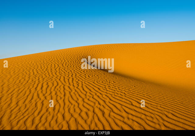 Sand dunes in morning light, Merzouga, Meknès-Tafilalet Region, Morocco - Stock Image