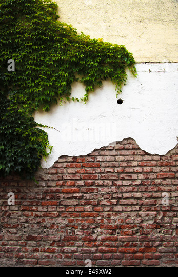 House facade with different layers and facade greenery - Stock Image