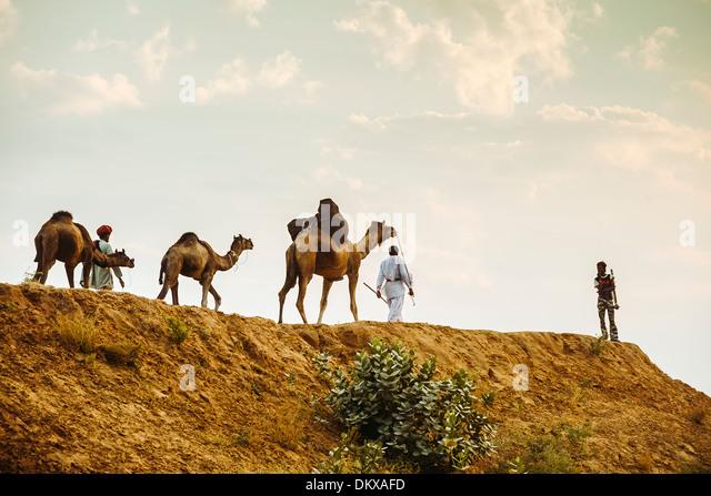 Camel traders, Pushkar India, Rajasthan - Stock-Bilder