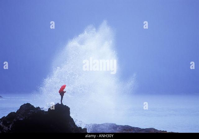 Storm watching, Rennel Sound, Haida Gwaii, British Columbia, Canada. - Stock-Bilder