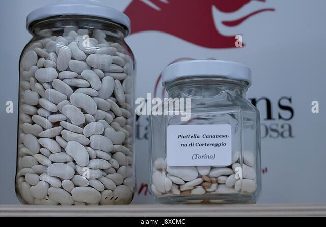 'Piattella canavesana' , a kind of white bean, from Cortereggio,Piedmont,Italy,Europe - Stock Image