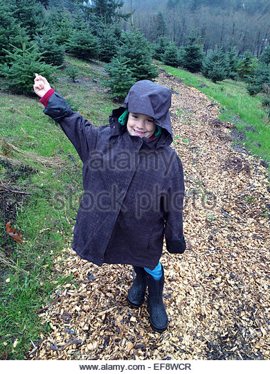 USA, Oregon, Portland, Boy pointing to Christmas Tree - Stock Image