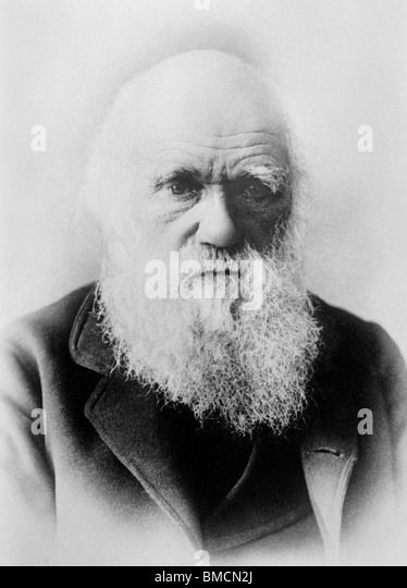 Vintage portrait photo circa 1870s of Charles Darwin (1809 - 1882) - the English naturalist famous for his theory - Stock-Bilder