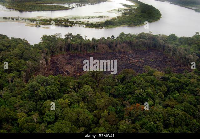 Ilegal deforastation inside a conservation unity, amazon, - Stock Image