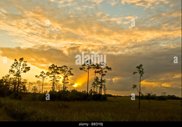 Everglades National Park Florida dramatic sunset in Pinelands with ray of light coming through the clouds bright - Stock Image