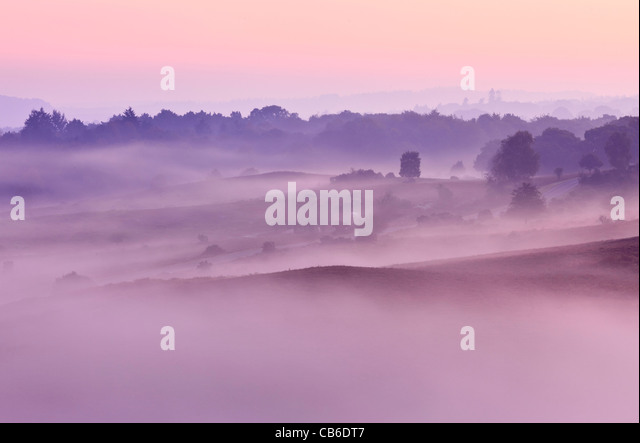 A misty autumn dawn at Rockford Common in the New Forest National Park, Hampshire, UK - Stock-Bilder