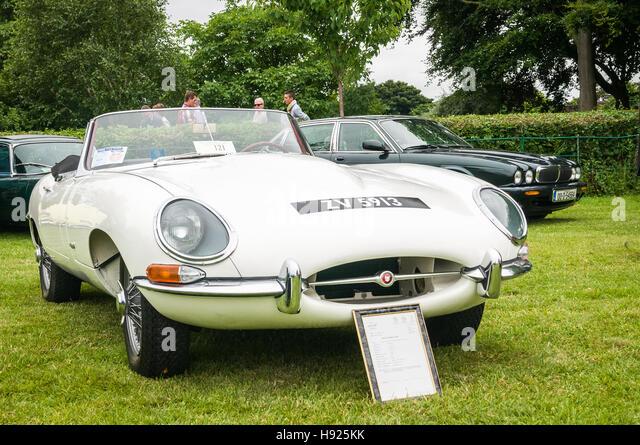 Vintage car show - Stock Image