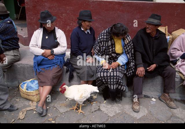Ecuador Saquisili Market Otavalo Cotopaxi Chibuleos Indigenous natives women man hats chicken - Stock Image
