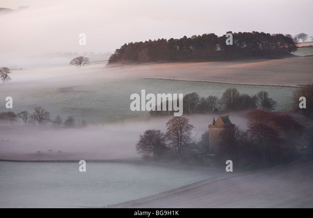 Mist and Trees from the Hill of Tarvit, Ceres, Fife, Scotland - Stock-Bilder