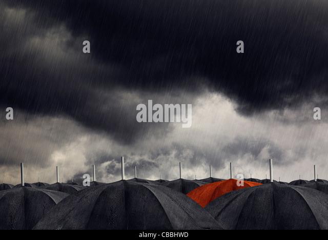 Red umbrella with black umbrellas - Stock Image