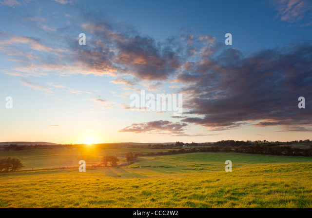 Meadow sunset, County Mayo, Ireland. - Stock-Bilder