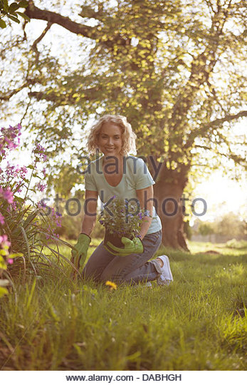 A mature woman planting flowers in a garden - Stock Image
