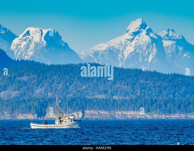 Vancouver Island Ham Nets