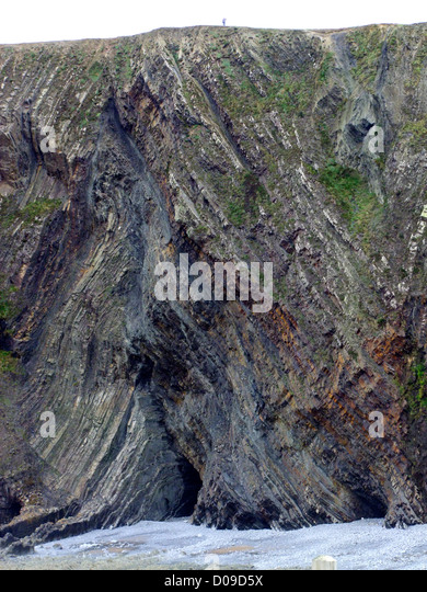 A view of  the dramatic cliffs at Warren Cliff, Hartland Quay, Devon, UK - Stock Image