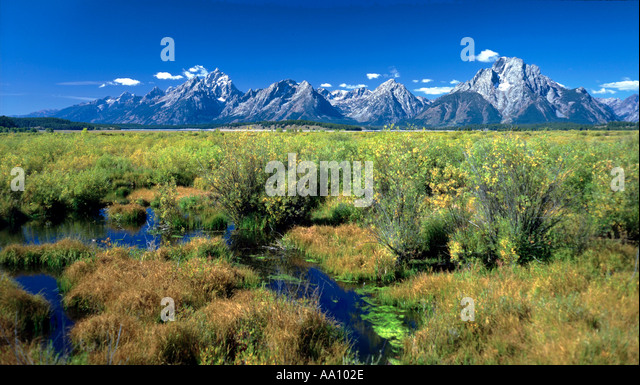 The Grand Teton mountain range in Wyoming USA in early Sept COPYRIGHT DUANE BURLESON - Stock Image