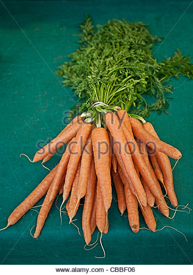 Close up of bunch of carrots - Stock Image