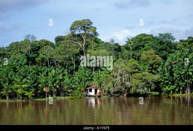 forest river hindu single women Indians love these peaks because they are a part of every indian's life  national  aquatic animal - river dolphin  holi then there is holi, the festivals of colours  when men, women and children drench one another with.