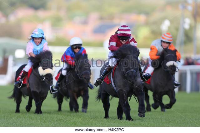 Plumpton, UK. 17th October 2016. Kinvara Garner riding Fairy Idaho wins the Moorcroft Racehorse Welfare Centre Shetland - Stock Image