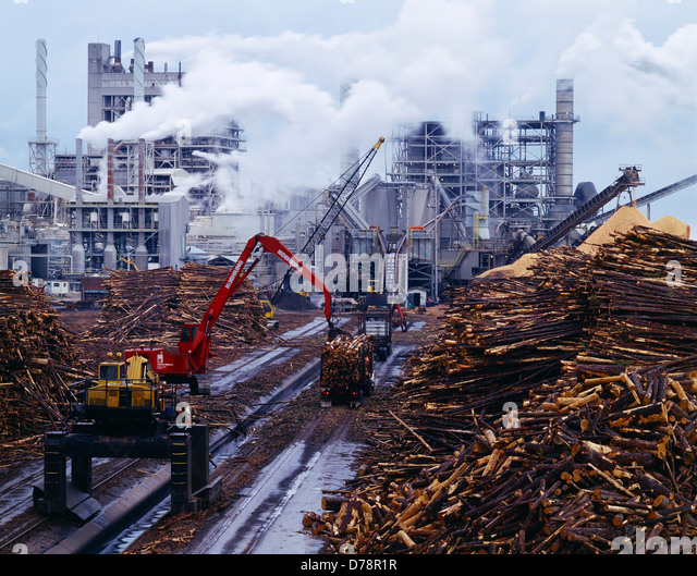 eco terrorism and forest product company Investment company liquidity  by the consumer product safety  increase your understanding of the federal register eco-system and improve your.