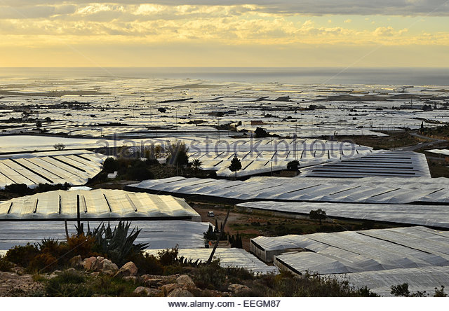 Greenhouses almeria spain stock photos greenhouses - El ejido almeria ...