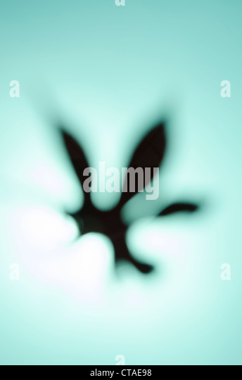 abstract colorful background graphic image - Stock Image