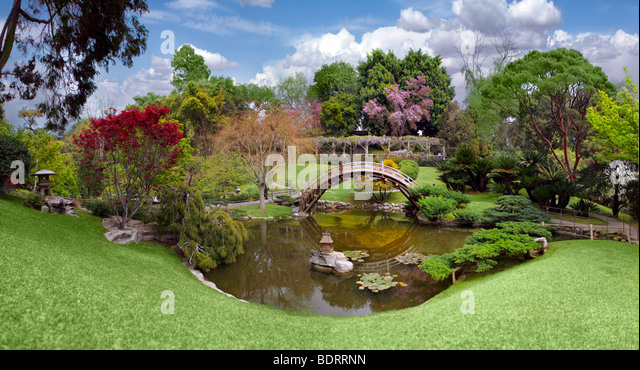 Botanical garden at the Huntington Library in California - Stock Image