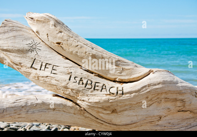 A log on a beautiful tropical beach with the words: 'Life is a beach' written on it. - Stock Image