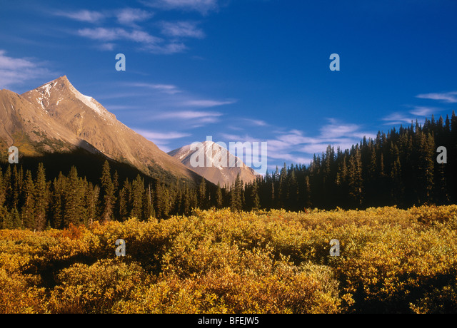 Nigel Pass, Banff National Park, Alberta, Canada - Stock Image