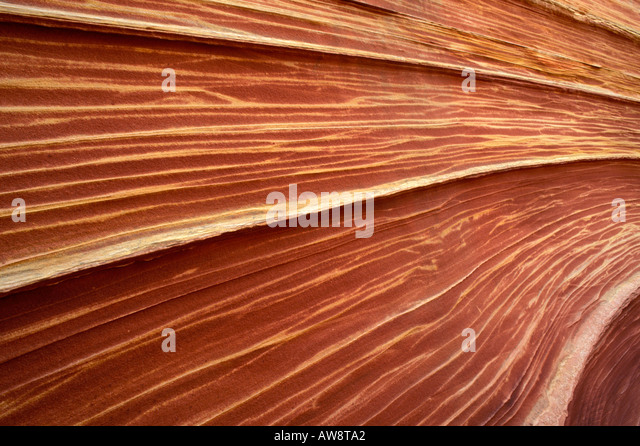 Detail of sandstone formation known as The Wave in the Coyote Buttes area Paria Canyon Vermilion Cliffs Wilderness - Stock Image