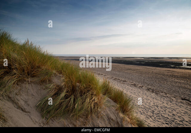 Landscaping Over Sand : Sand dunes beach dusk stock photos