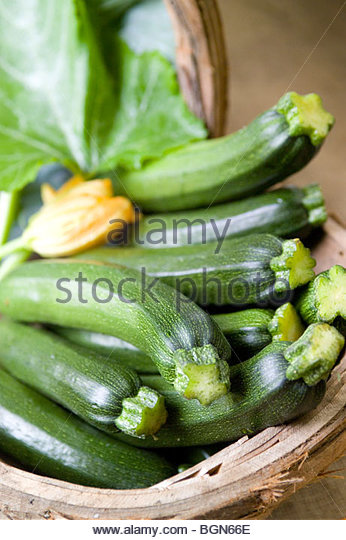Newly picked Courgettes & orange flower in a trug basket - Stock Image