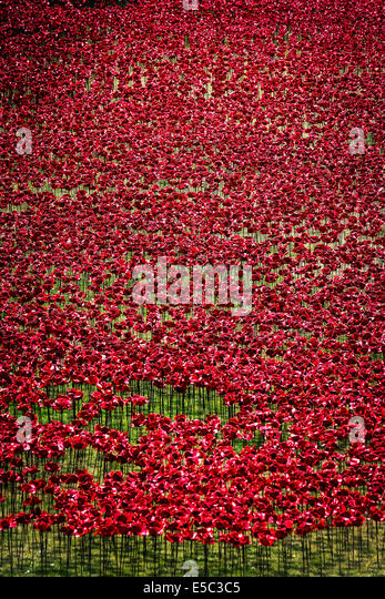 26th July 2014:  Ceramic Poppies planted in the dry moat at the Tower of London as part of a stunning major artistic - Stock-Bilder