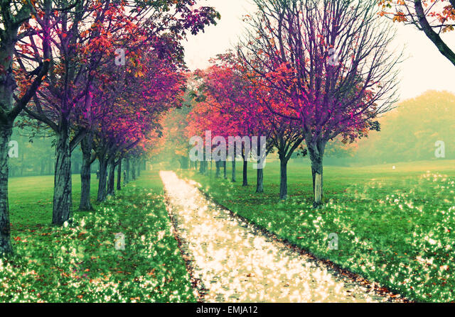 fantasy, fairytale, trees, unrealistic, fiction, fictional, leaves, autumn, story, path, snow, fog, landscape, beauty, - Stock Image