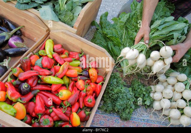 Organic Chinese Food Santa Monica