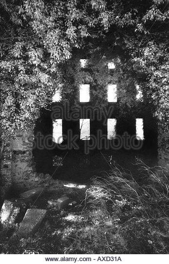 Castle Strange, County Roscommon, Ireland - Stock-Bilder