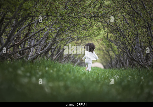 Utah USA child natural woodland tunnel tree branches - Stock Image
