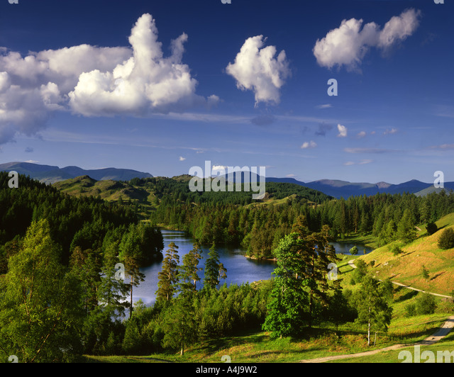 GB - CUMBRIA:  Tarn Hows in the Lake District National Park - Stock Image