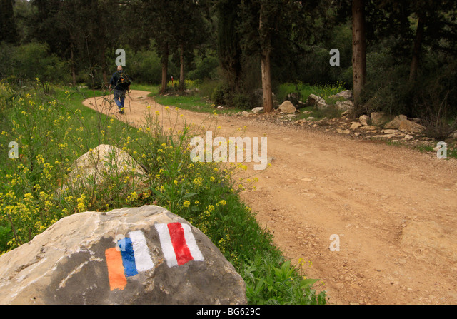 Israel, Jerusalem Mountains, Israel Trail in Nahal Ksalon - Stock Image