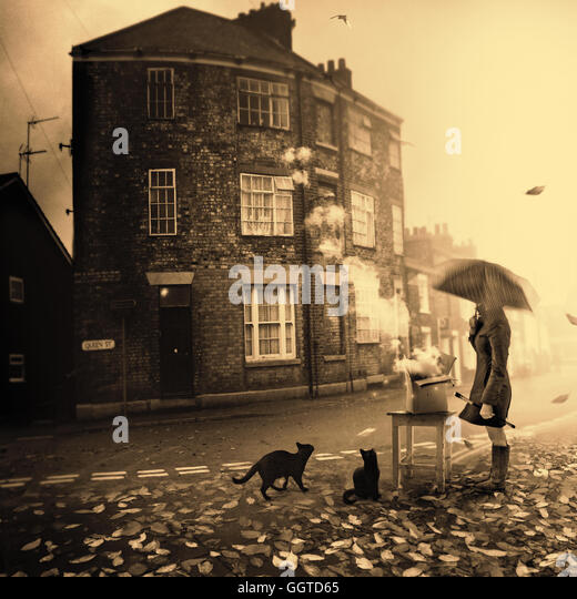 conceptual image of person under umbrella standing in a middle of street in town surrounded by two black cats - Stock Image