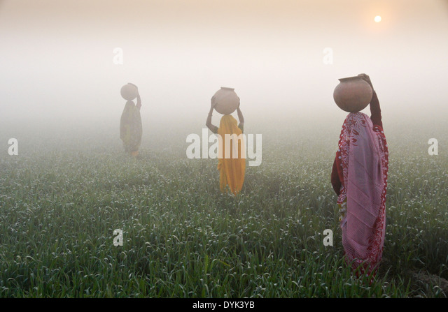 Women with water jugs on head, walking through rice field at sunrise on a foggy morning, India - Stock-Bilder