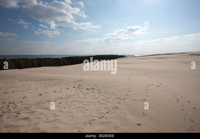 Waves of sand - formed by wind and water - Stock-Bilder