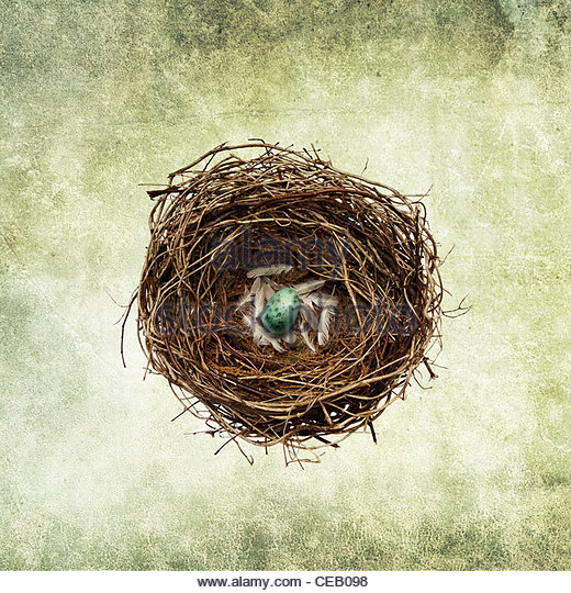 nest egg print - Stock Image