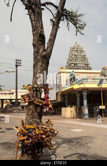 Kamakshi Amman temple in  ; Kanchipuram kancheepuram  ;Tamil Nadu  ; India - Stock Image
