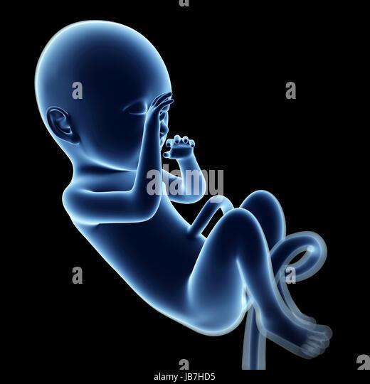 Pregnancy Week 9 Stock Photos & Pregnancy Week 9 Stock ...