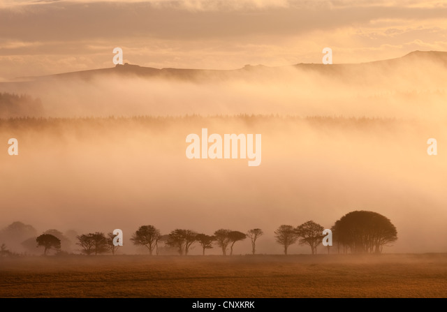 Mist covered moorland at sunrise, near Powdermills, Dartmoor, Devon, England. Autumn (October) 2011. - Stock Image
