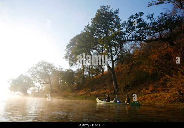 A flat-bottomed canoe drifting along the river bank on the Zambezi River at dawn on a misty morning - Stock Image