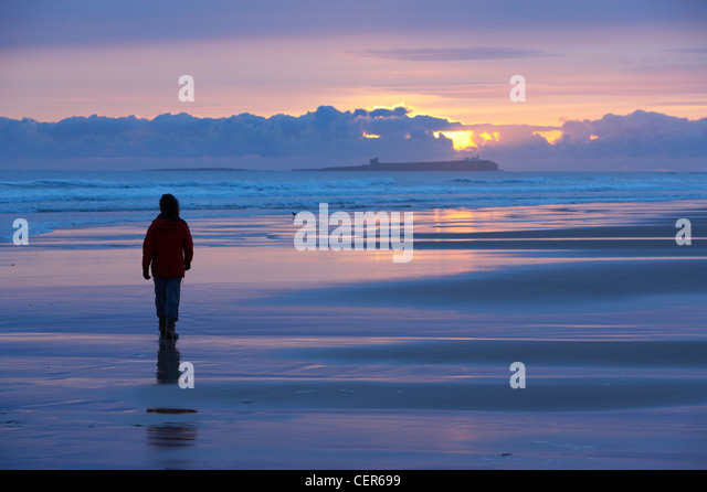 woman walking on the beach at dawn, Bamburgh, Northumbia. England, UK - Stock Image
