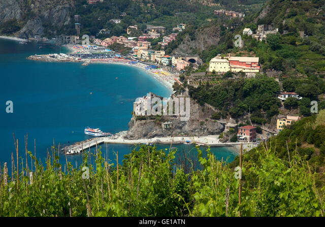 A vineyard grows on a hillside overlooking the Cinque Terre resort town of Monterosso, Italy. The five hillside - Stock Image